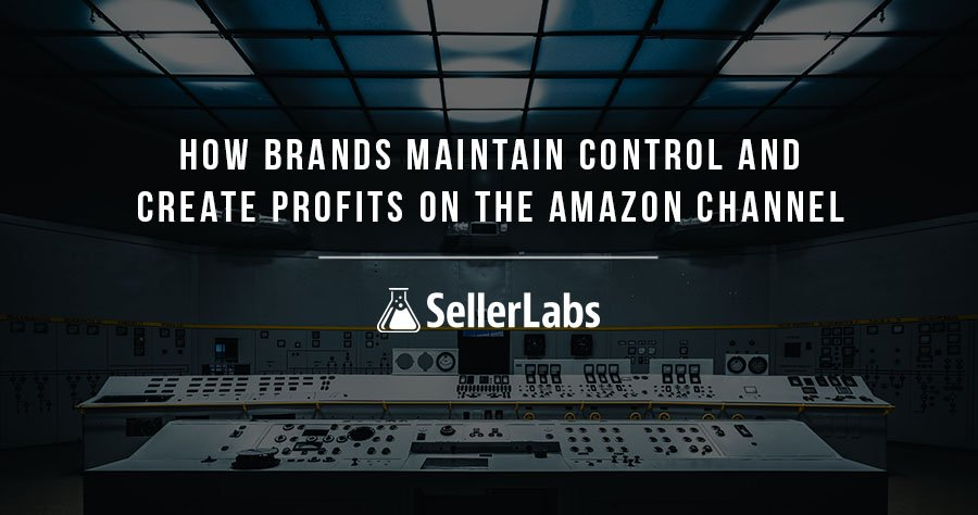 How Brands Maintain Control and Create Profits on the Amazon Channel Webinar Recap