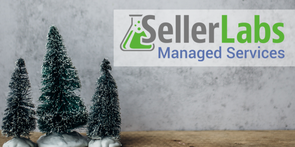 Seller Labs Managed Services for Amazon Advertising