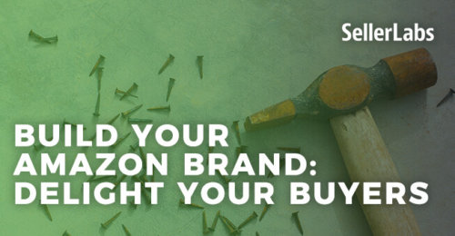 Build Your Amazon Brand: Delight Your Buyers
