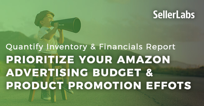 Prioritize Your Amazon Advertising Budget & Product Promotion Efforts with Quantify: Inventory & Financials Promote Report