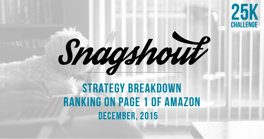 $25k Challenge: December 2015 Snagshout Strategy Breakdown – Ranking On Page 1 Of Amazon